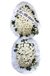 White Gerbera Daisies Basket