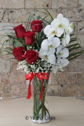 Live White Orchid and your loved ones with great design of white roses Unforgettable Surprises You Can.