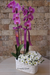 White Lilies Flower: 5 Piece, Purple Orchid: 1 Piece   