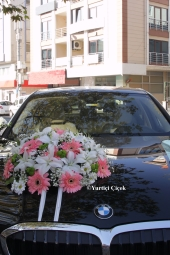 Live Purple Orchid and your loved ones with great design of white roses Unforgettable Surprises You Can.