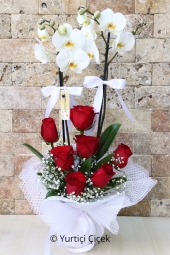 Prepared double-stranded arrangement of red roses and white orchids and loved ones that will bring an air of the exotic to any environment.