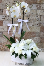 White orchids and white roses and lilies next to the double-stranded prepared from a huge flower arrangement so send your love with.