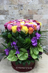 You can be very happy with your arrangement with 60 colorful roses, green anthuriums and purple orchids in an oversized box.
